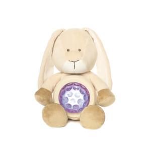 Nattlampa, Kanin Diinglisar Teddykompaniet