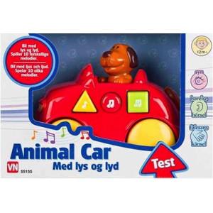 Hund i röd bil