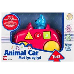 Katt i rosa bil