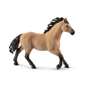 Schleich Quarterhäst Hingst 13853