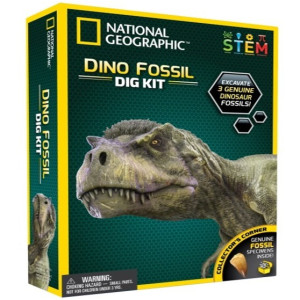National Geographic Experiment Dino Fossil Dig Kit