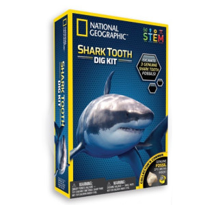 National Geographic Experiment Shark Tooth Dig Kit