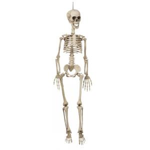 Hängande Skelett 90 cm